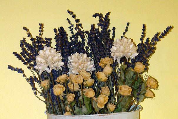 entretien_fleurs_sechees
