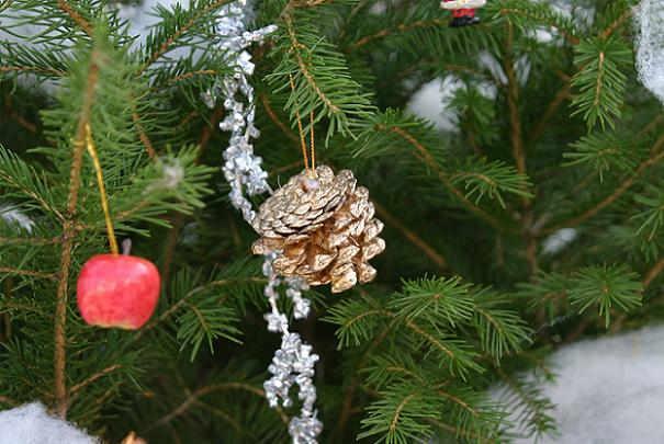 Comment recycler son sapin de Noël coupé ?