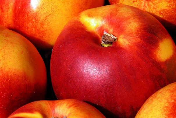 prix_fruits_legumes_ete_2010