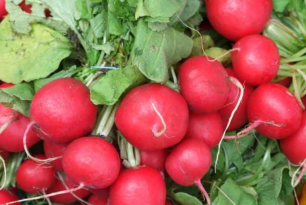 agriculture_bio_prix_fruits_legumes