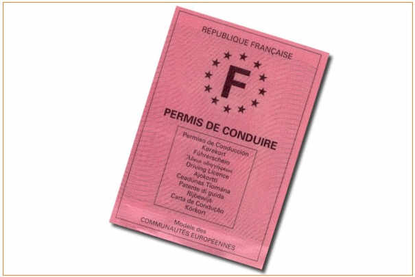 delai_restitution_points_permis_conduire