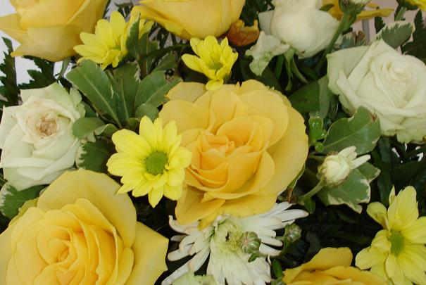 trouver_fleuristes_prix_pas_chers