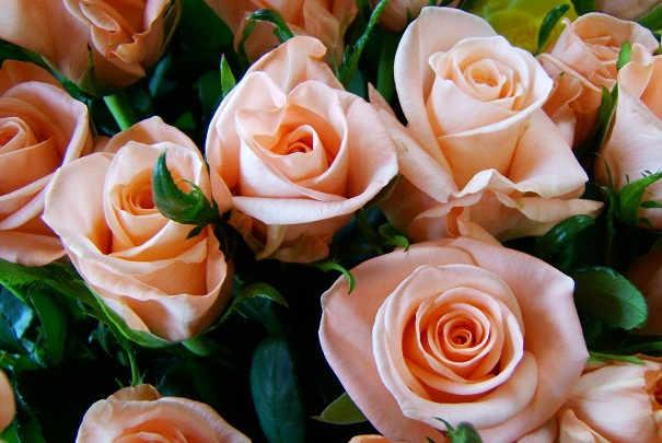 fete_des_meres_bouquets_fleurs_coupees