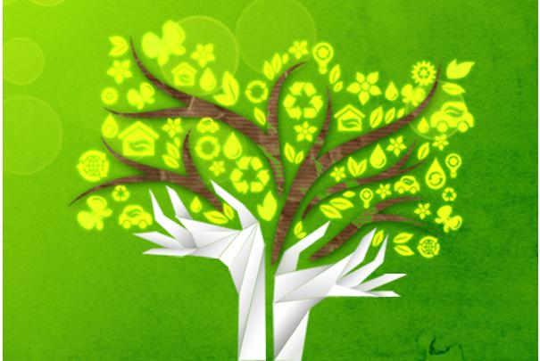 journee_internationale_environnement_2011