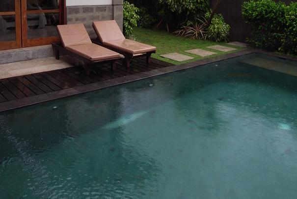 Bien intégrer sa piscine au jardin