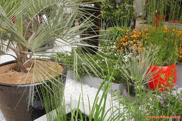 Salon Jardins Jardin aux Tuileries à Paris du 6 au 9 juin 2014